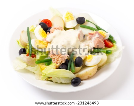 Freshly made traditional nicoise salad with tuna, boiled egg, potato, mayo, beans, olives and lettuce, seen from the side - stock photo