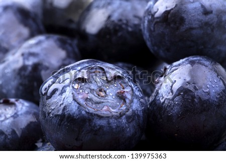 Freshly picked blue berries with water drops - stock photo