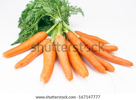 freshly picked bunch of carrots - stock photo
