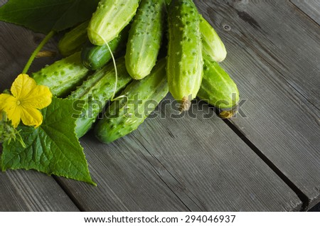 Freshly picked cucumbers on the wooden background. Copy space - stock photo