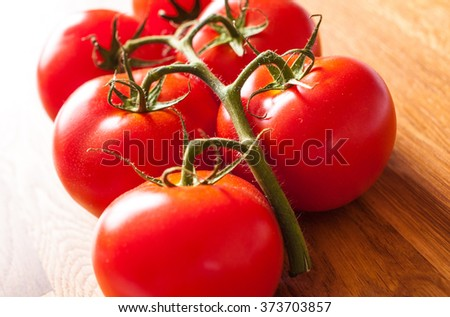 Freshly picked tomatoes on the vine - stock photo