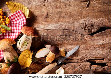 Freshly picked wild autumn mushrooms from the forest being prepared and sliced on a rustic wooden kitchen counter with copyspace, overhead view - stock photo