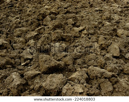 freshly ploughed field fragment - stock photo
