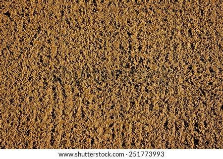 Freshly raked soil ready for sowing seed - stock photo