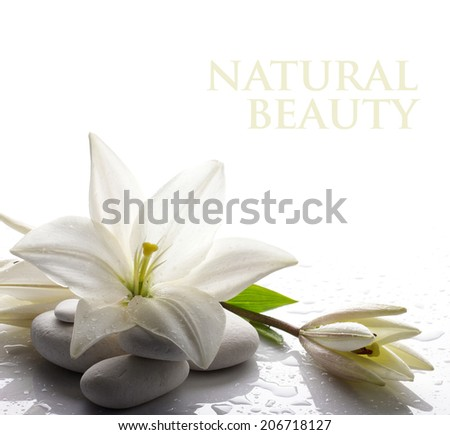 freshness white lily with  bud and several white stones on white background - stock photo