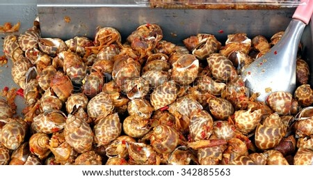 Fried Areola Babylon sea snails with red hot chili  - stock photo