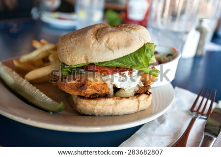 Fried fish sandwich with tartar sauce and french fries. - stock photo