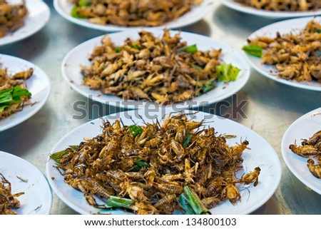 Fried grasshoppers - stock photo
