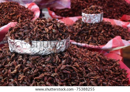 Fried grasshoppers at a market in Oaxaca, Mexico - stock photo