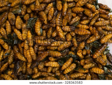 Fried insects, street food at Central Market of Cambodia - stock photo