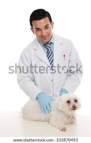 Friendly male veterinarian smiling and gently holding a pet animal on examination table. - stock photo