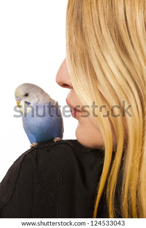 Friendly parakeet sitting on a womans shoulder - stock photo