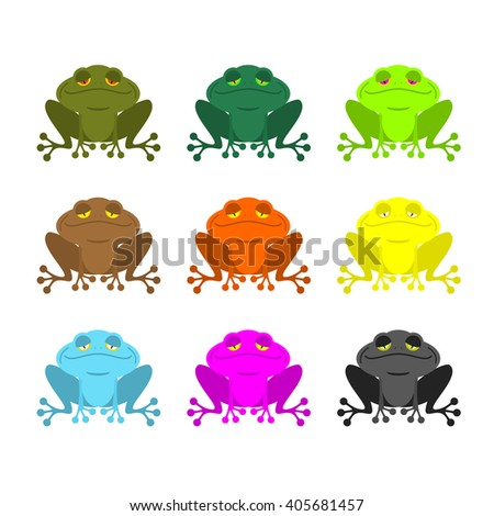 frog color Set . Colored toads. Woody Orange frog. Yellow and blue fantastic amphibious frog.