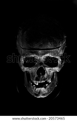 front of skull - stock photo