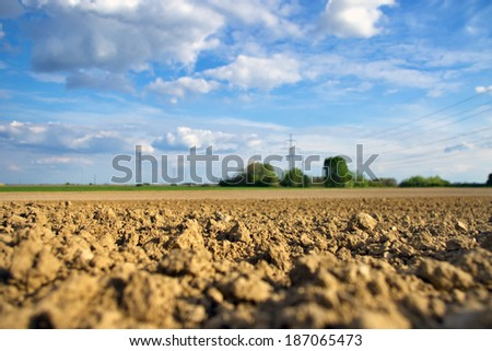 Front shallow focus of soil with agriculture field, trees and power lines in the background - stock photo