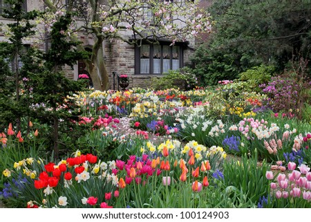 Stock images similar to id 63824965 the front of a house - Flowers in the front yard ...