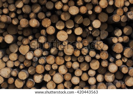 Frontal view of natural pattern of stacked felled logs  - stock photo