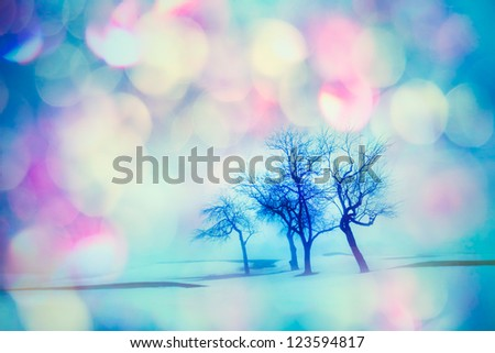 Frosty and colorful winter landscape with trees - stock photo