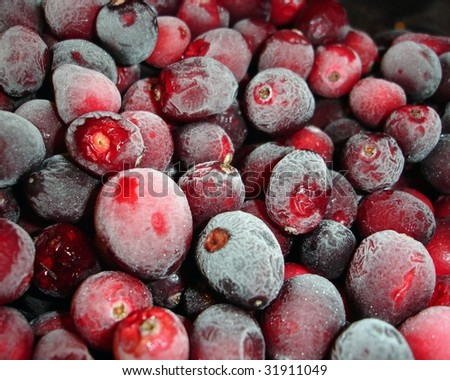 Frosty, luscious red cranberries. - stock photo