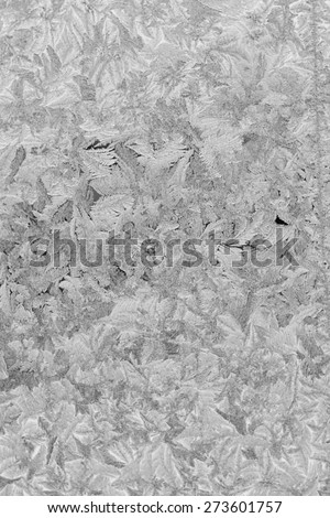 Frosty patterns on winter window, black and white background. - stock photo