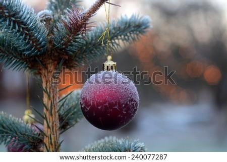 Frozen christmas ball  - stock photo