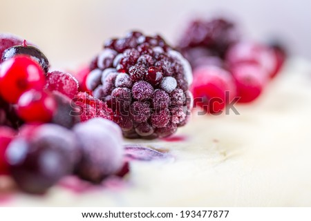Frozen forest fruits on an ice cream - stock photo