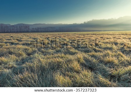 Frozen grass in a morning in Northern Italy - stock photo