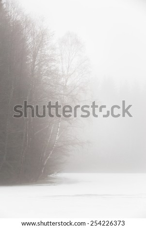 Frozen lake and isolated aspen trees in the mountains, on a misty day - stock photo