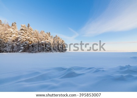 Frozen lake shore and snow covered forest - stock photo