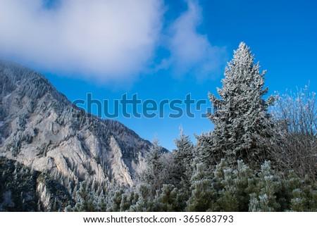 Frozen nature on mountain, in winter season - stock photo