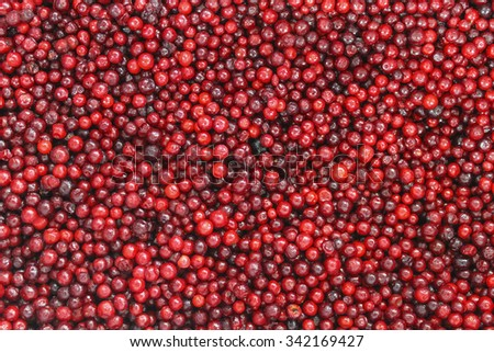 Frozen red berry cranberries close-up as background - stock photo