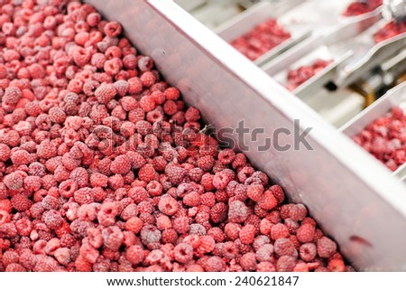 frozen red raspberries in sorting and processing machines - stock photo