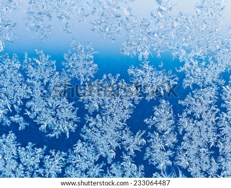 frozen snowflakes on window glass close up at blue winter sunrise - stock photo