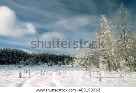 frozen snowy winter road, field trees before the storm - stock photo
