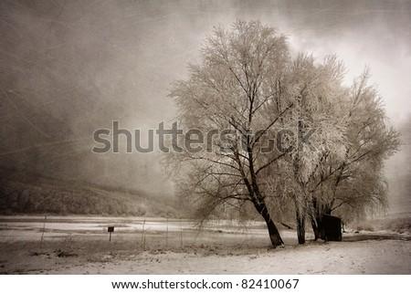 Frozen winter landscape - stock photo