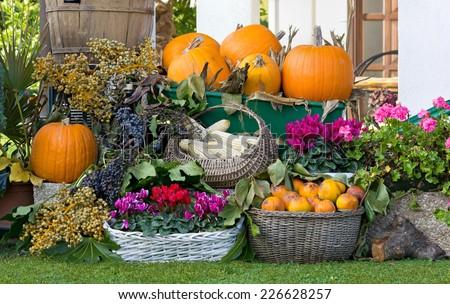 Fruit and Flower Arrangement in a Garden - stock photo