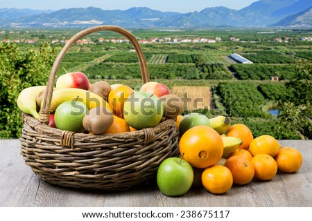 fruit basket in crops with apples,bananas,oranges and tangerines - stock photo