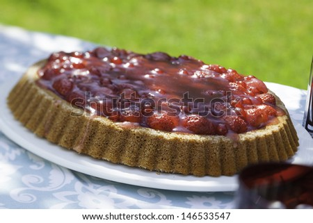 fruit cake on a table in the garden - stock photo