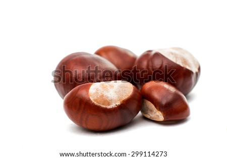 fruit chestnut on a white background - stock photo