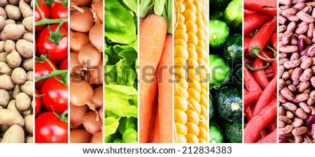 Fruit collage - Group of various fresh fruits - stock photo