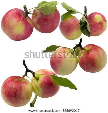 Fruit, healthy, apple, red, fresh, food, sweet, eat, organic, ripe. - stock photo