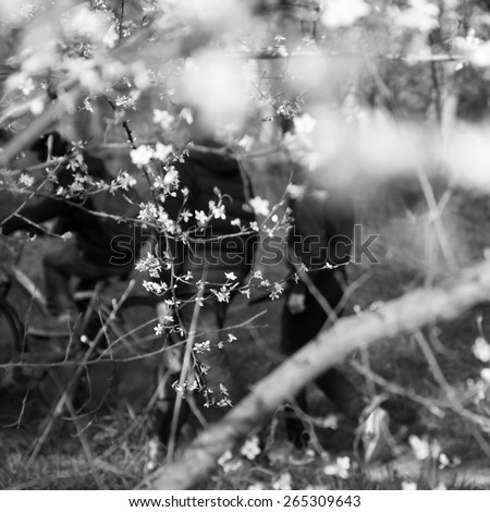 Fruit tree blossoms and the figures of the three boys (one of them riding bike) and the dog. Youth concept. Metaphor of new life. Selective focus on the twigs. Aged photo. Black and white. - stock photo