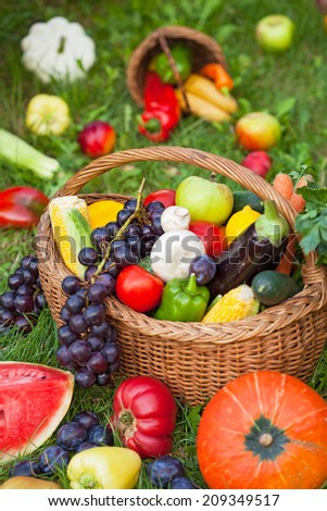 Fruits and vegetables on the grass, vertical - stock photo
