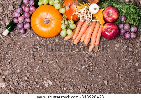 Fruits and vegetables with pumpkins in autumn, concept - stock photo