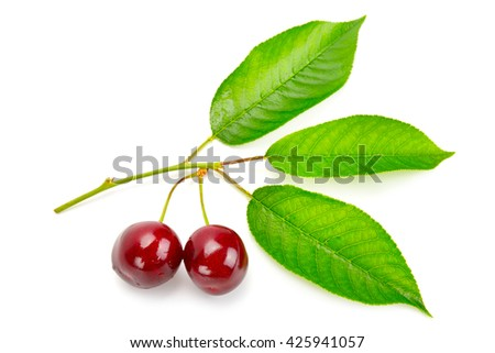 fruits of sweet cherry and fresh leaves isolated on white background - stock photo