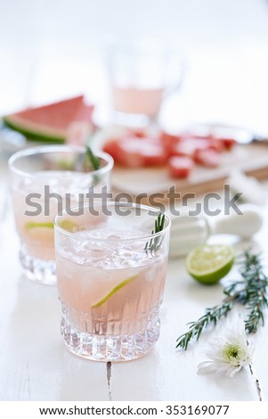 Fruity feminine cocktails mocktails drinks decorated with lime slices and garnish with cut up watermelon in the background - stock photo