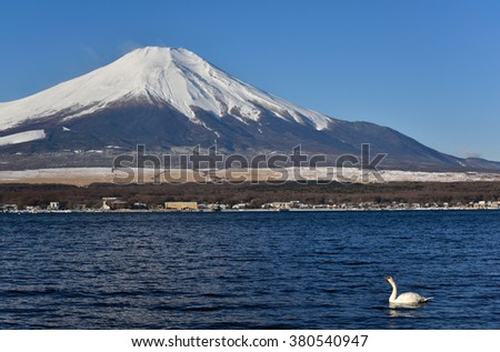 Fujiyama at Yamanakako Lake, Japan - stock photo