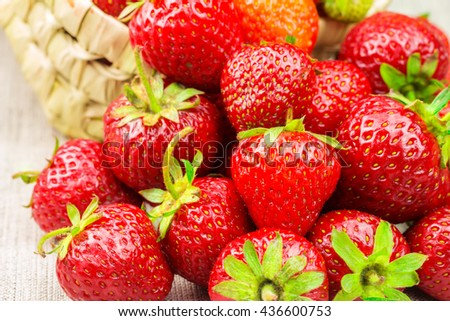 Full basket of ripe strawberries that are poured out on the canvas - stock photo