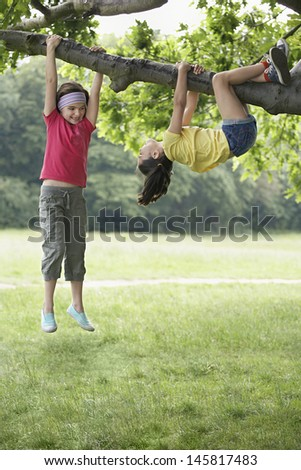 Full length of playful girls hanging on tree branch - stock photo
