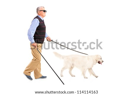 Full length portrait of a blind man moving with walking stick and his dog, isolated on white background - stock photo